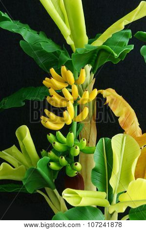 Banana Tree, Clay, Handmade Product, Art