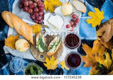 cozy autumn picnic