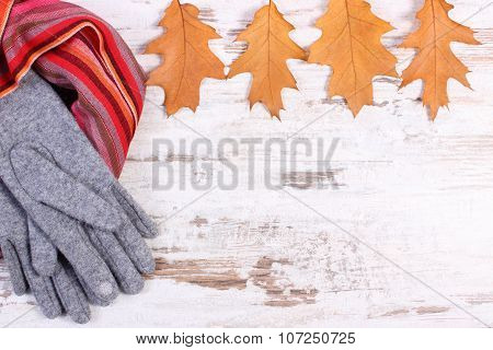 Womanly Woolen Clothes And Autumnal Leaves With Copy Space For Text, Old Rustic Wooden Background
