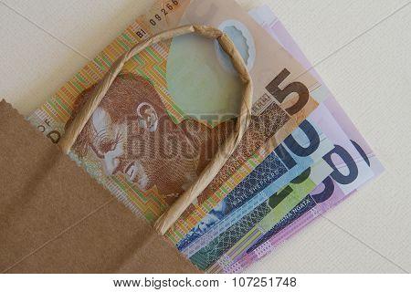 NZ Money in a Bag
