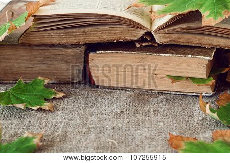 Old Book With Autumn Maple Leaves