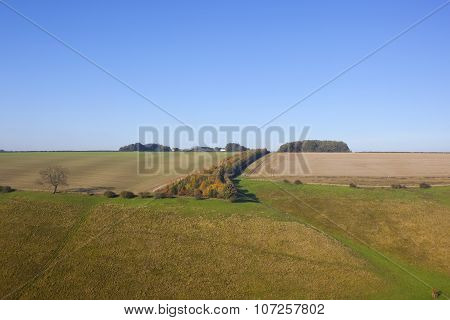 Valley With Autumnal Trees