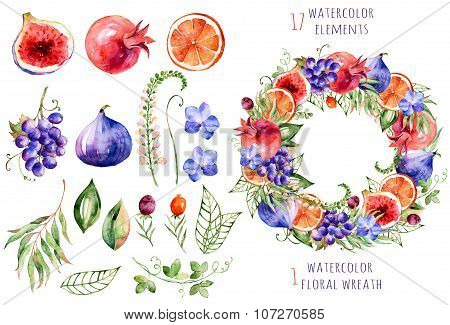 Colorful floral and fruits collection with orchids,flowers,leaves,pomegranate,grape,orange,figs and