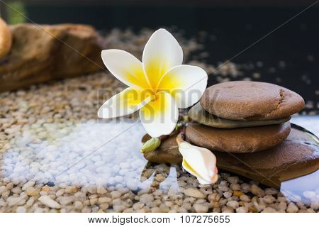 Frangipani decorated on water and pebble rock in zen style for spa meditation mood