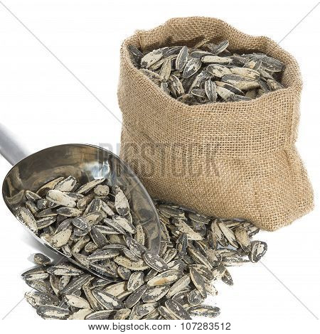 Sunflower Seeds With Measuring Scoop On White Background