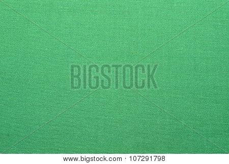 light green canvas background