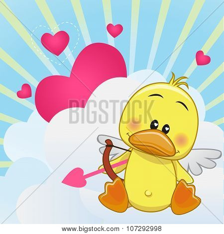 Cupid Duck
