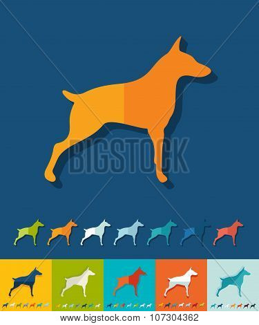 Flat design. doberman