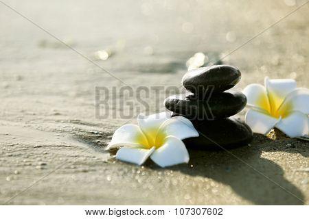 Pebbles with plumeria on seashore