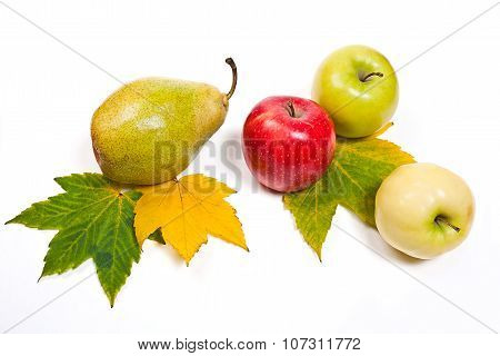 Group Of Ripe Juicy Fruit With Yellow Autumn Leafs On White Background