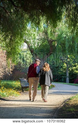 Senior couple walking in the park