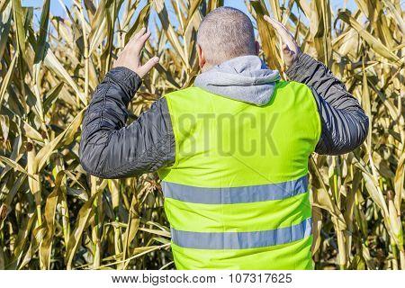 Anxious farmer on cold corn field