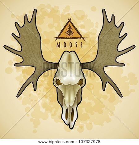 Vector Moose skull