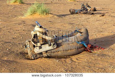 saddle for a camel