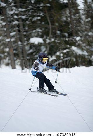 Little Skier Doing Slalom