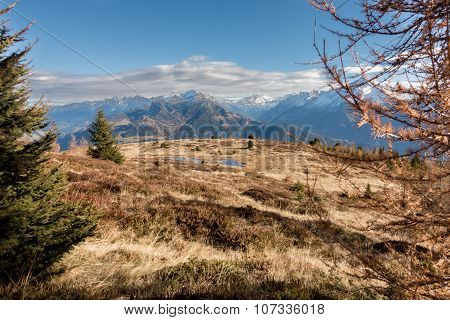 Mountain landscape with bog in the autumn of Tyrol Alps