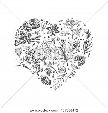 Isolated heart from spices and herbs on white background. Vector  illustration for your design