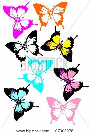 A collection of colorful butterflies. More Swallowtails butterflies in variety of colors.