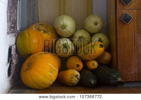 Stack Pumpkins And Squash On Floor