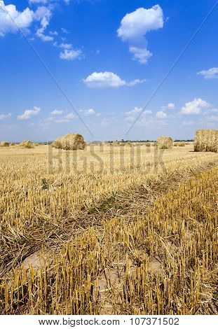 haystacks straw   summer