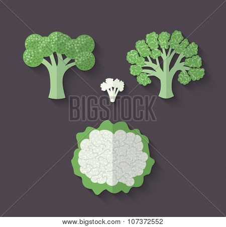 A Set Of Vegetables In A Flat Style - Cauliflower And Broccoli