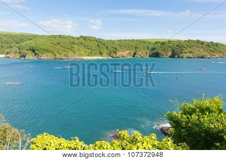 Devon coast Salcombe England uk in summer with pilot gig boats and blue sea and sky