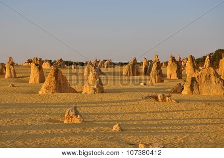 Pinnacles Desert Landscape: Nambung National Park, Western Australia
