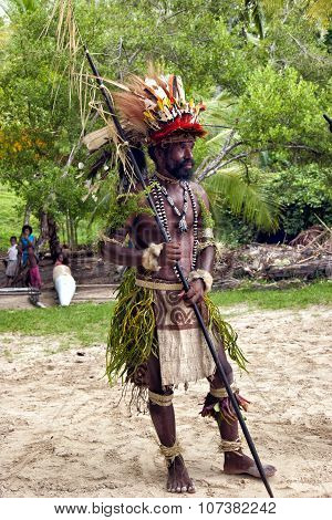 Close up of New Guinea Papuan Korafe tribe warrior wearing traditional colorful bird of paradise fea