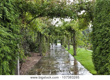 Wet stone pathway under rose arch in a cottage garden with white chairs on a rainy summer day