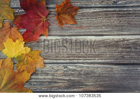 Autumn Leaves On Vintage Wooden Background
