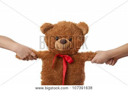 Two Children Pulling Teddy Bear Apart