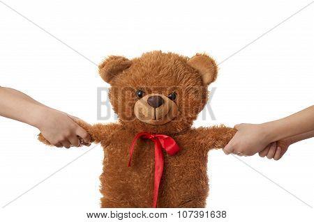 Two Children Pulling Teddy Bear Apart