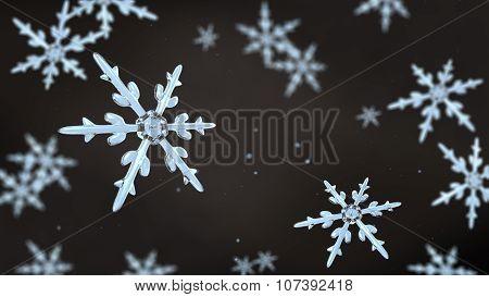 Snowflakes Focusing Background Black White