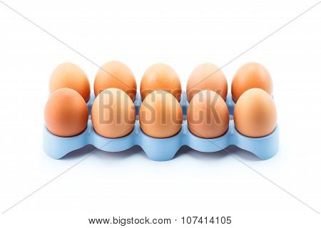 Chicken Eggs In Blue Stand