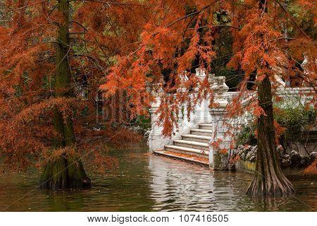 Autumn In The Retiro Park In Madrid