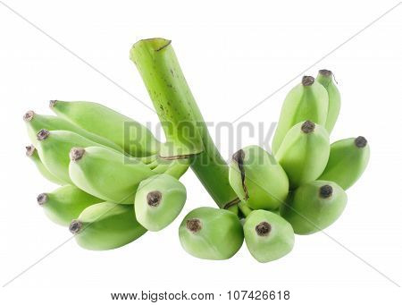 Unripe Green Banana Fruits On White Background