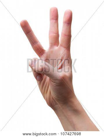 Arm Third
