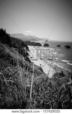 Black And White Beach Vista