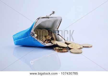 coins in the blue color purse
