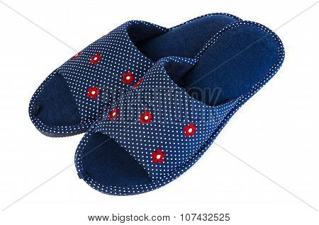 Pair Of Blue Slippers