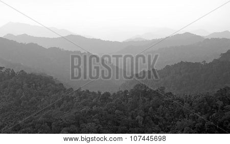 Misty Mountain Hills Landscape, Layers Of Mountains With Fog