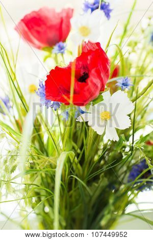 gardening, botany, summer and flora concept - beautiful wildflowers bunch