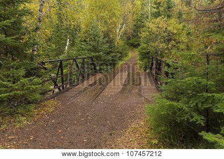 Fall Trail & Bridge Scenic