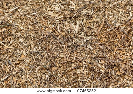 Background Of Wood Chips And Sawdust