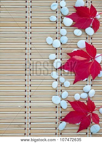 Red Fall Leaves And White Stones