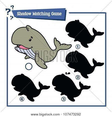 funny shadow whale game.