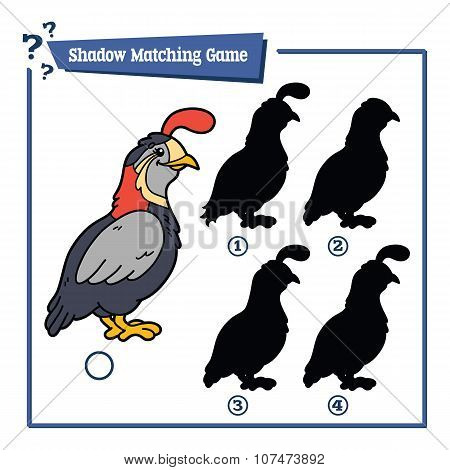 funny shadow quail game.