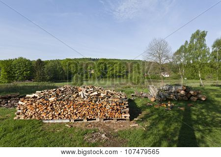 Stacked wood in the countryside.