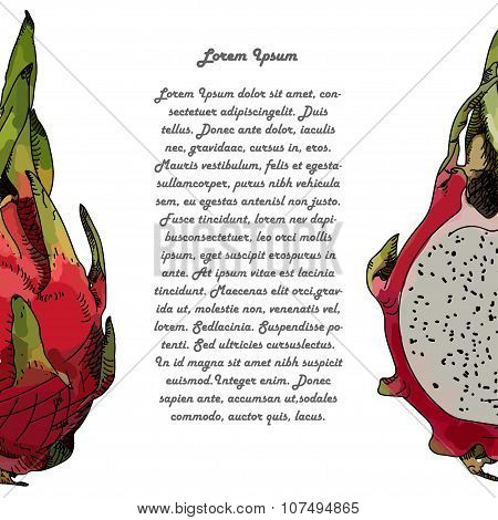 Dragon Fruit Or Pitahaya. With Text