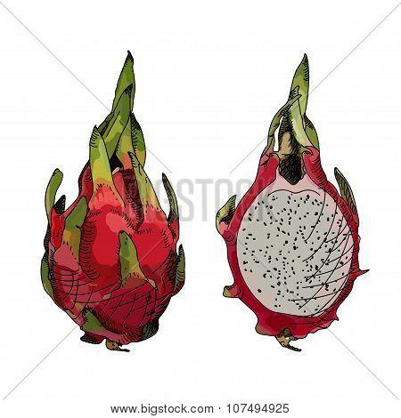 Dragon Fruit Or Pitahaya.